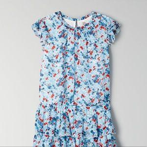 Aritzia/Little Moon ruffle blue tiered maxi dress